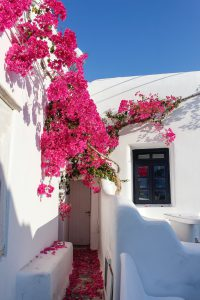 Grecian Home With Flowers